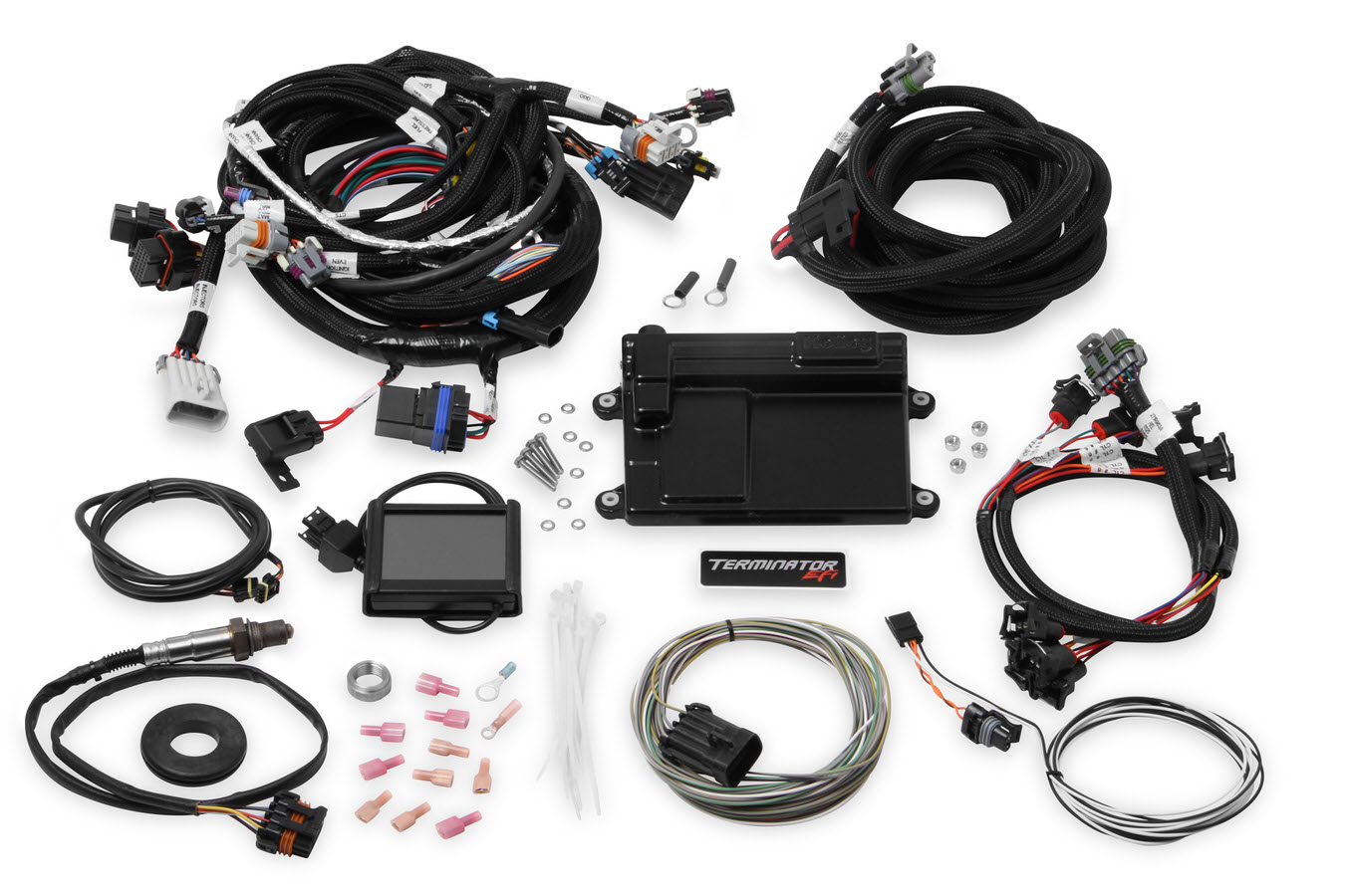 HLY550 608 hly550 608 jpg holley ls standalone wiring harness at fashall.co